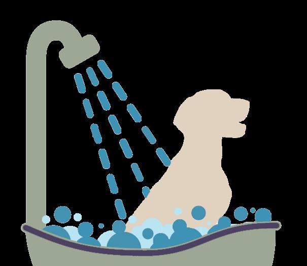 Spotless Dog Wash